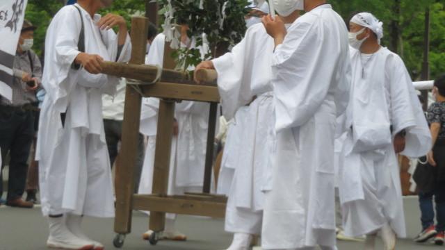 2017 4 22 お城  (牡丹の花)