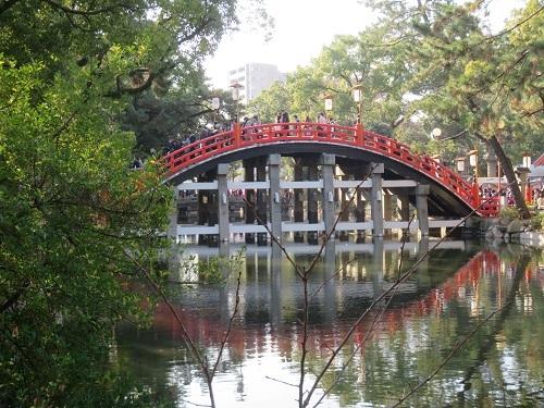 2017 7 22 平池緑地公園