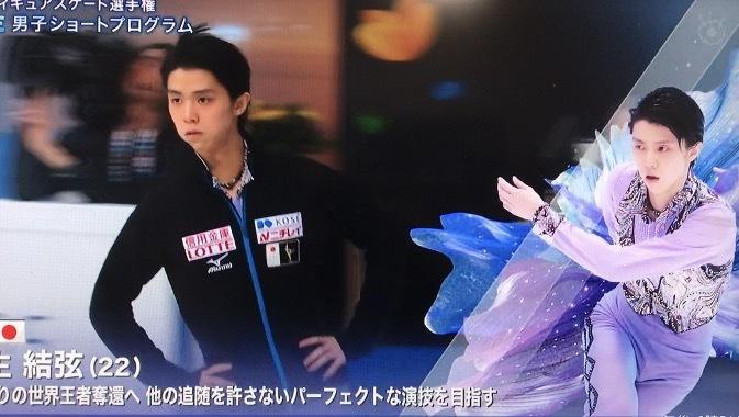 Wsp選手紹介 (1)