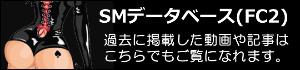 SMデータベース・FC2