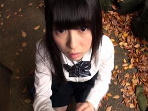 無垢な清純女子校生が温泉宿に連れ込まれ、汚れた行為にハマっていく… あおいれな