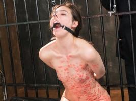 ハーフ美人女捜査官のプライドを蹂躙する過激なSM! 鼻フック、蠟燭、鞭責め!!