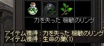 LinC0899.jpg