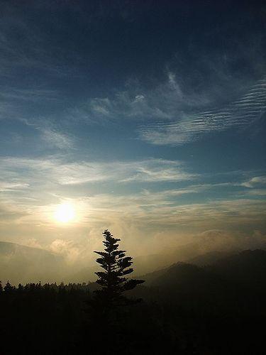 横手山ドライブインの雲海3