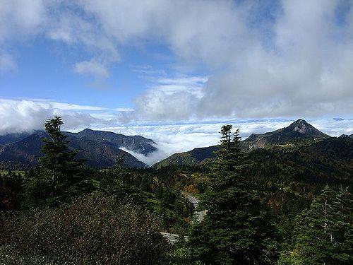 横手山ドライブインの雲海4
