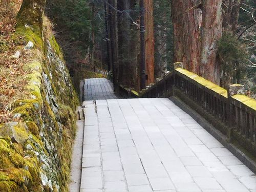 20180118榛名神社初詣5