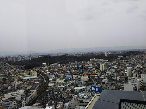 20180221堺市役所から見た仁徳天皇陵古墳