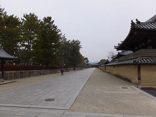 20180219奈良県斑鳩町法隆寺6