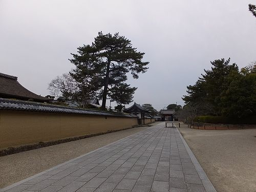 20180219奈良県斑鳩町法隆寺7