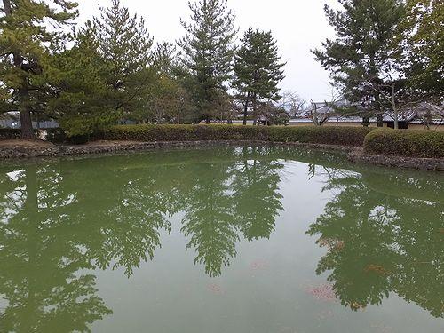 20180219奈良県斑鳩町法隆寺25