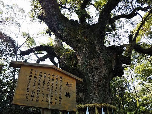 20180222愛知県名古屋市、熱田神宮その他 (4)