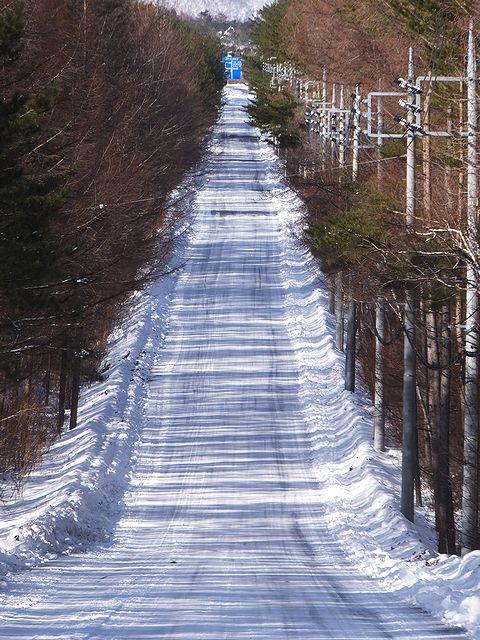 20170222北軽井沢の雪の道