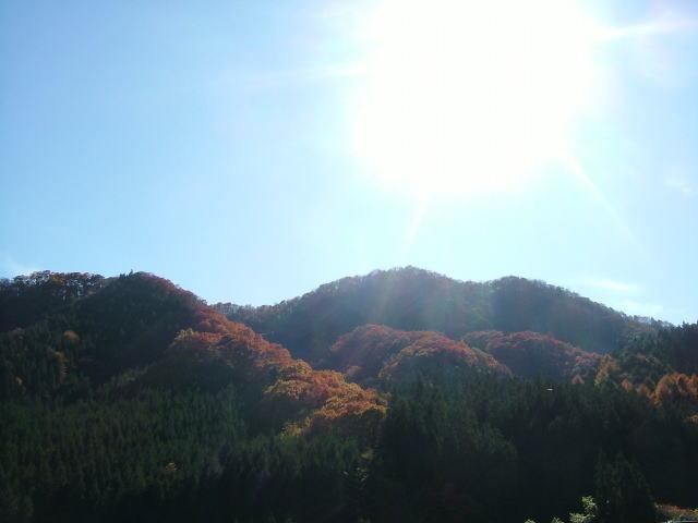 2008.11.群馬県六合村、紅葉