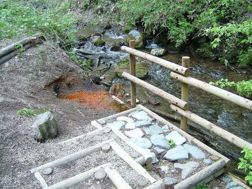 2006.5.長野県軽井沢町、千ヶ滝せせらぎの道