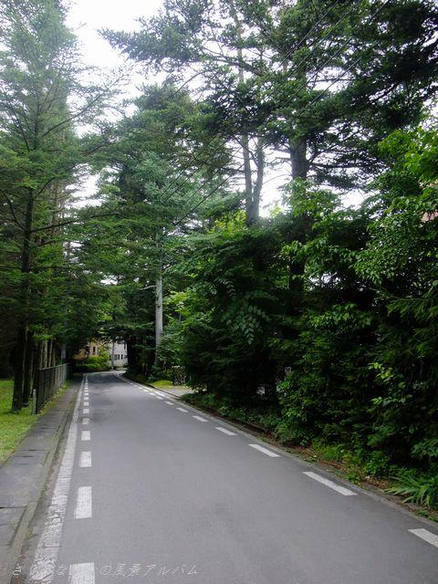 軽井沢町 散歩道 2011年8月 - インフォメーション
