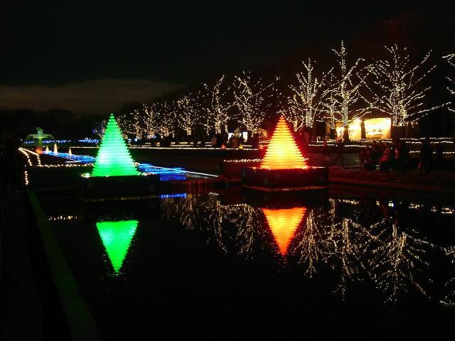2008.12.東京都立川市、昭和記念公園のイルミネーション