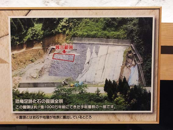 足跡化石発掘場所(富山市科学博物館)
