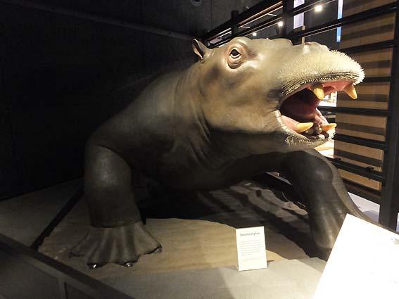 デスモスチルス復元模型(富山市科学博物館)