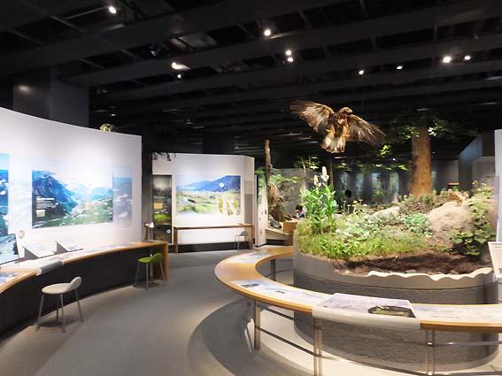 富山市科学博物館「とやま・空間のたび」コーナー