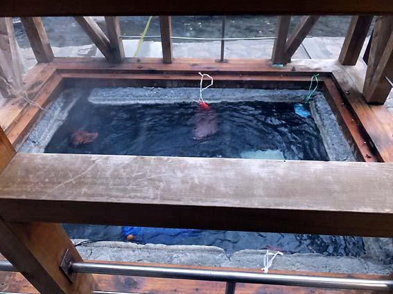 湯の峰温泉の「湯筒」