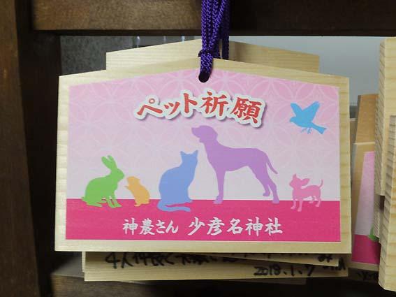 少彦名神社のペット祈願絵馬