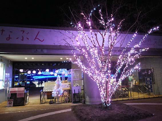 大阪府立花の文化園入り口