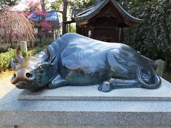 道明寺天満宮の撫で牛