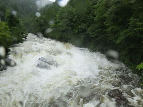雨で増水した川