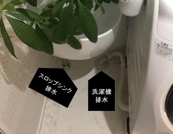 201711081057.jpg