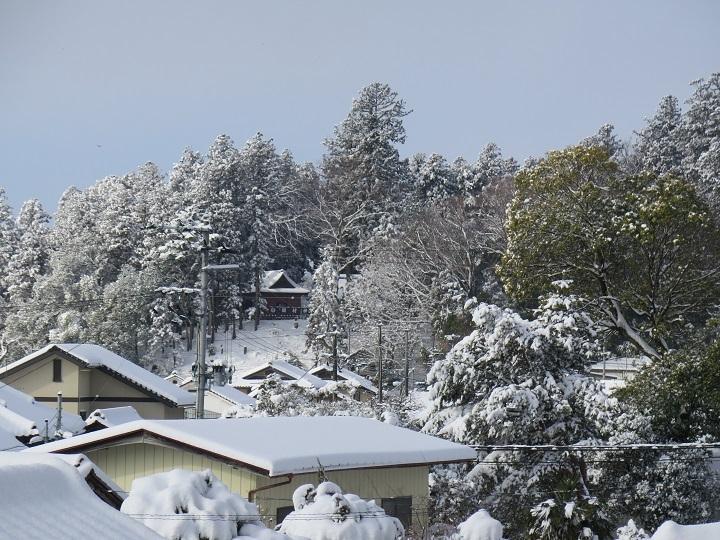 田村神社の雪