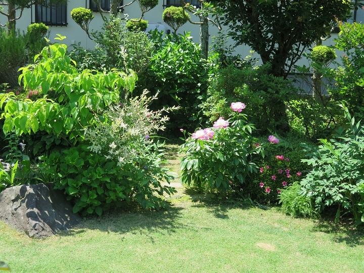 Yさん宅の庭