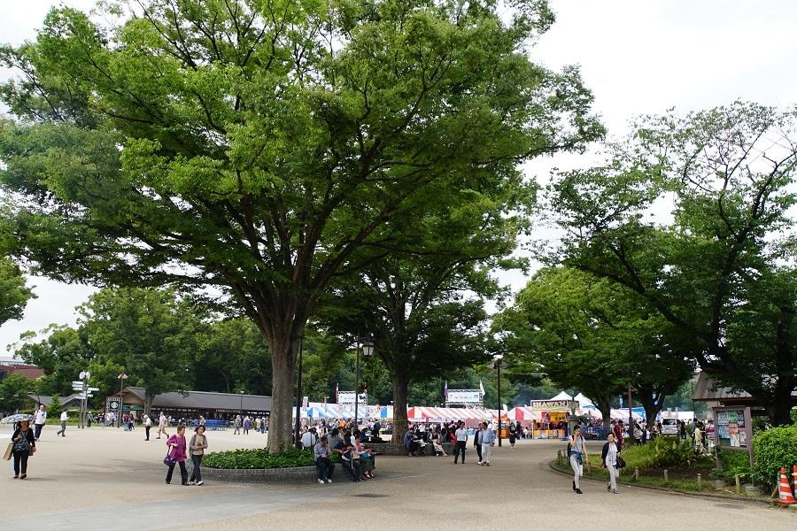 上野20180602