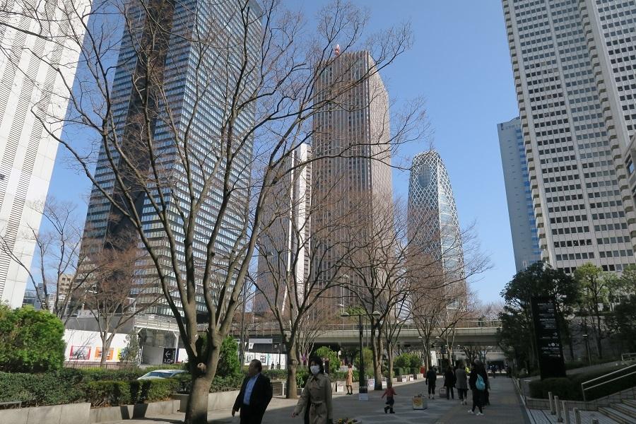新宿中央通り
