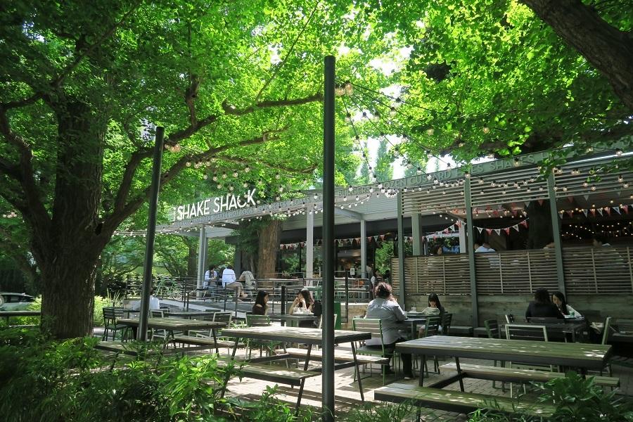 いちょう並木にあるレストラン20180508