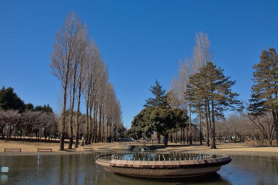 彩の森公園20180201