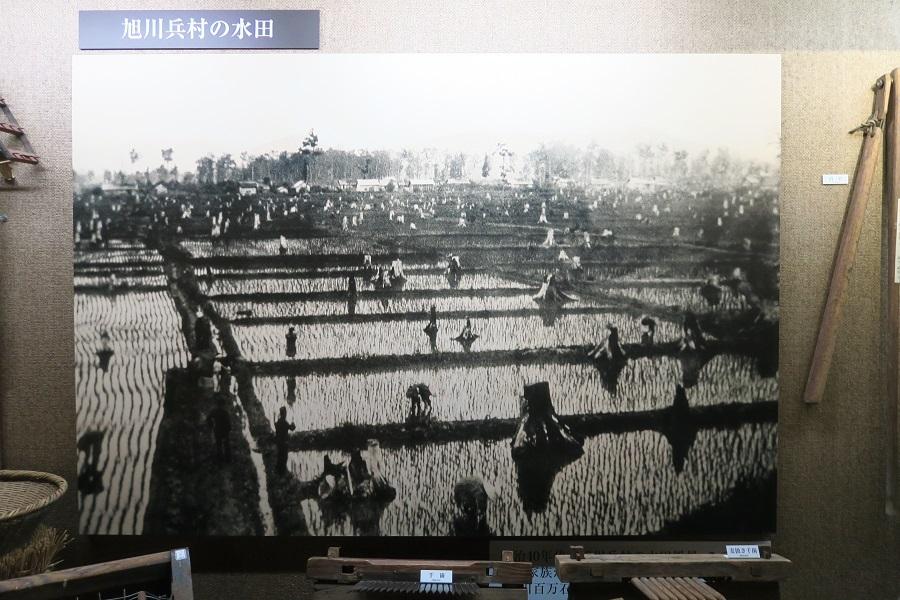 旭川20180810