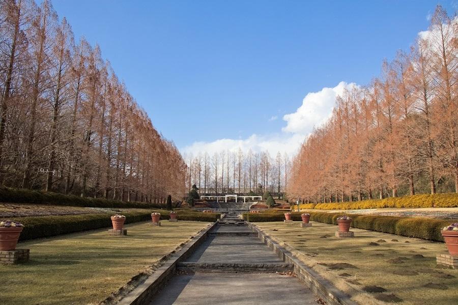 相模原公園1