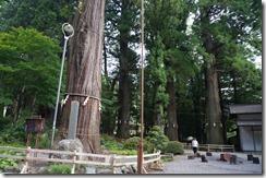 河口湖 河口神社7