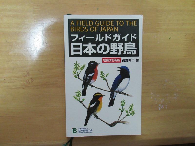 FG日本の野鳥28