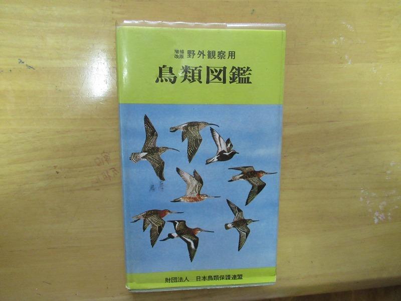 renmei28.jpg
