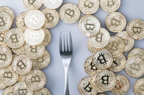bitcoinIMGL0891.jpg
