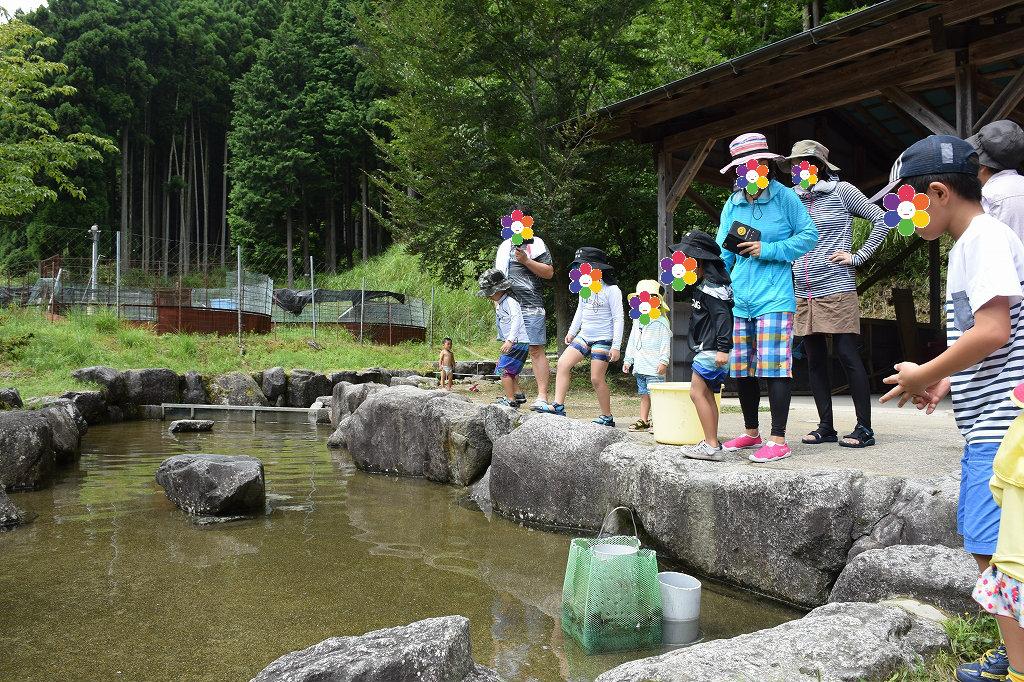 魚のつかみ取りと川遊び みつえ青少年旅行村2