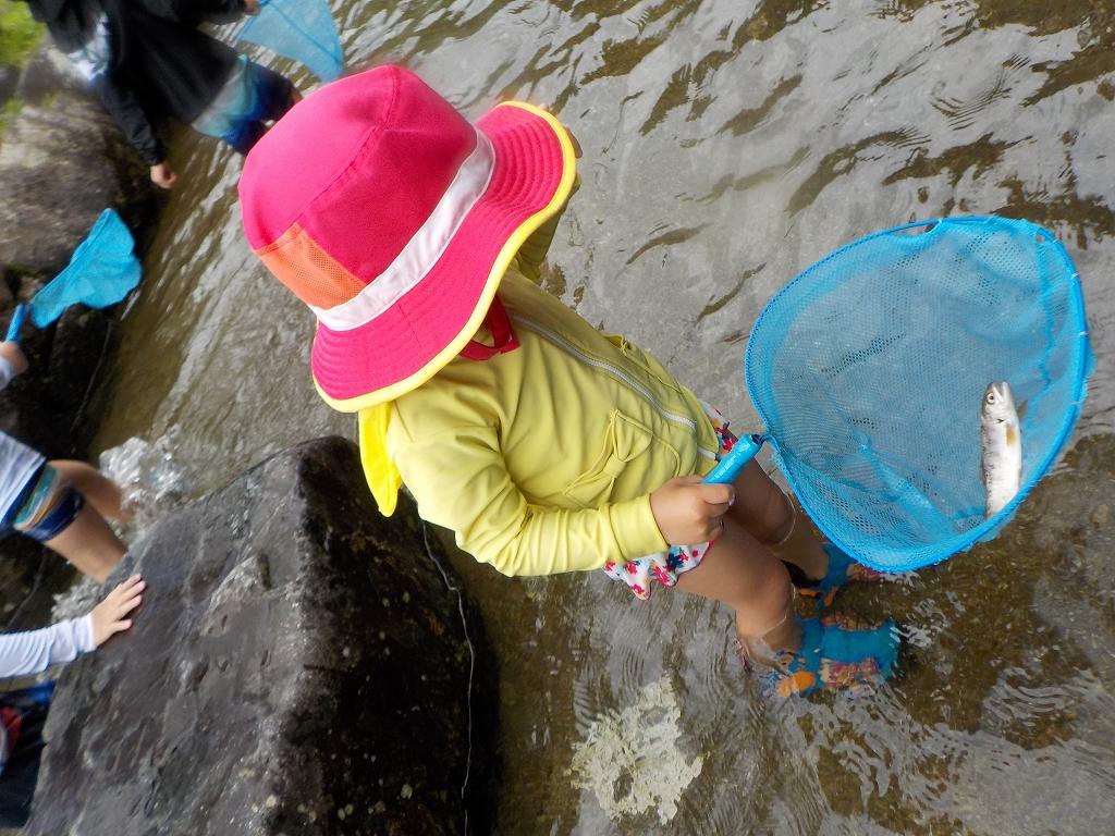 魚のつかみ取りと川遊び みつえ青少年旅行村8