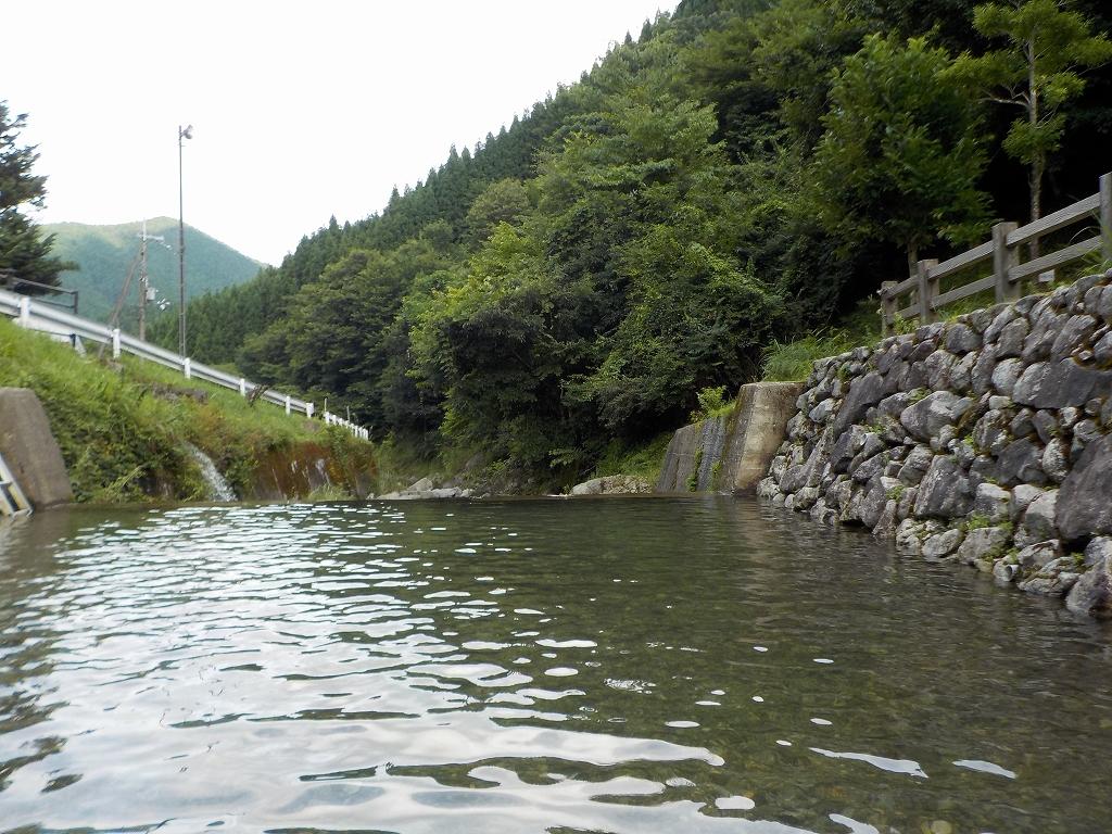 魚のつかみ取りと川遊び みつえ青少年旅行村10