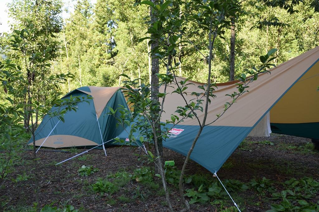 そして初キャンプ1.jpg