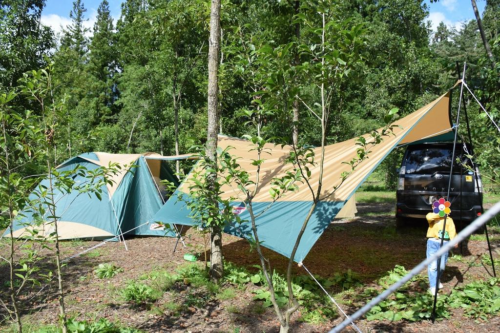 そして初キャンプ4.jpg