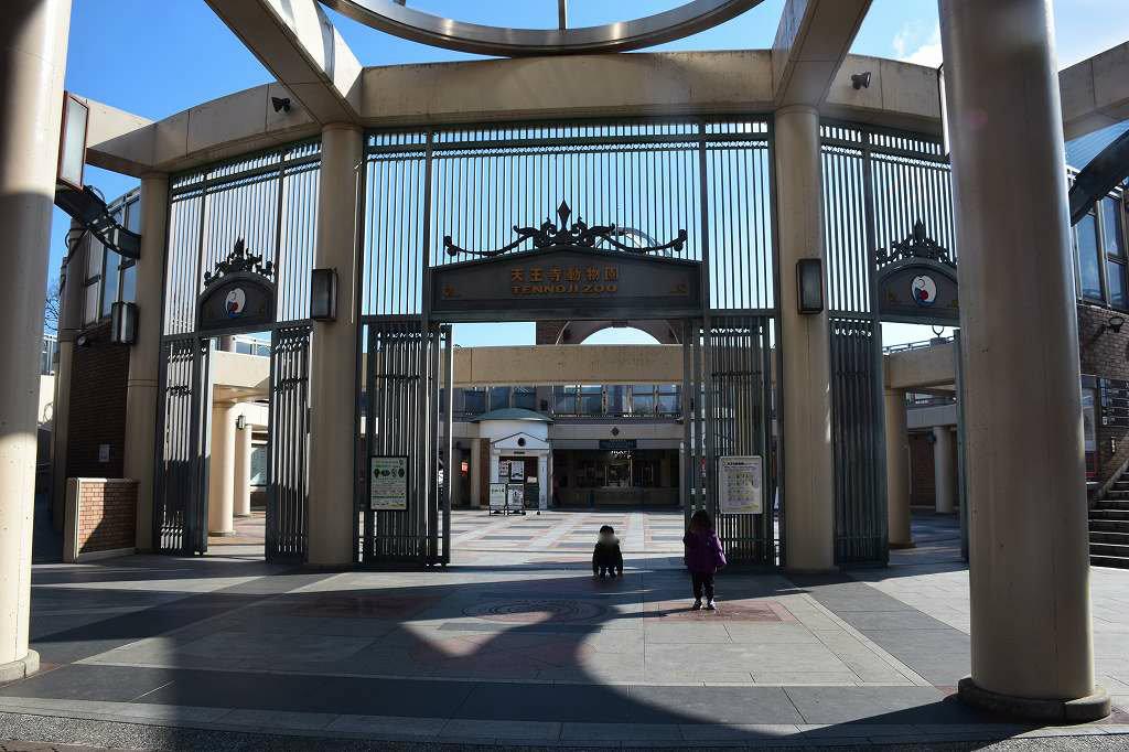 冬の天王寺動物園は空いていてよかったですよ1