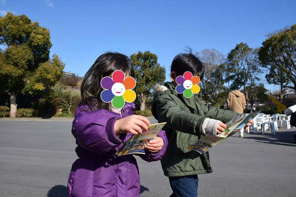 冬の天王寺動物園は空いていてよかったですよ2