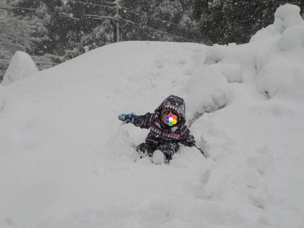 アップかんなべに行ったら豪雪に見舞われた6-1