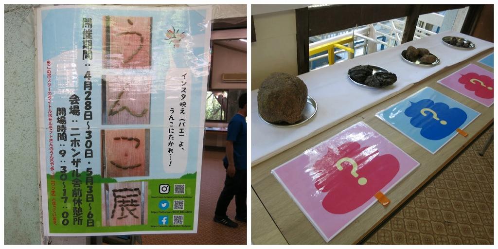 岡山 池田動物園は良いところでした2